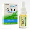 cbd-oil-dropper-250mg-600x600